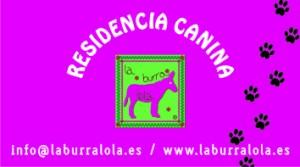 burralola1